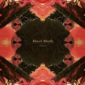 Dust Moth
