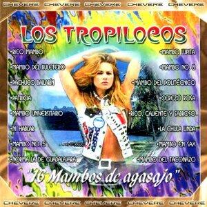 Los Tropilocos 歌手頭像