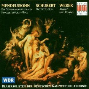 Bremen Deutsche Kammerphilharmonie Wind Soloists 歌手頭像