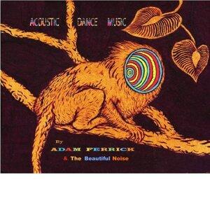 Adam Ferrick & the Beautiful Noise 歌手頭像
