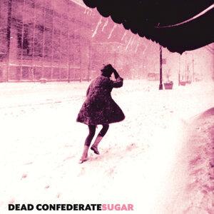 Dead Confederate 歌手頭像