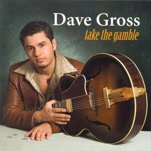 Dave Gross 歌手頭像