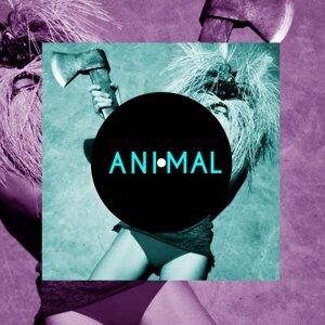 Animal 歌手頭像
