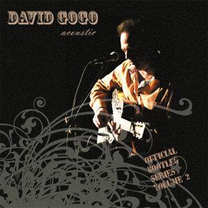 David Gogo 歌手頭像