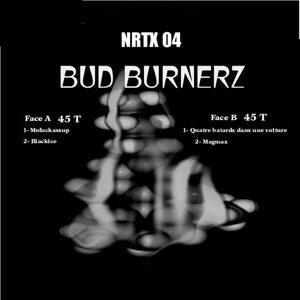 BudBurnerz 歌手頭像