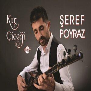Şeref Poyraz 歌手頭像