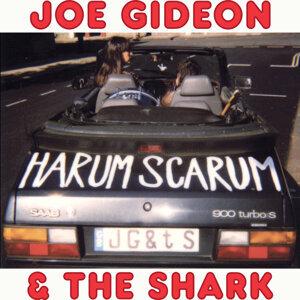 Joe Gideon & The Shark 歌手頭像