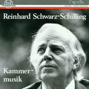 Reinhard Schwarz-Schilling: Kammermusik 歌手頭像