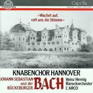 Knabenchor Hannover, Barockorchester 歌手頭像