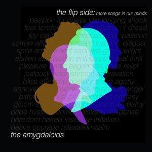 The Amygdaloids 歌手頭像