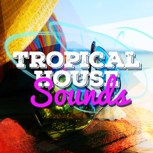 Perfect Tropical House 歌手頭像