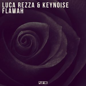 Luca Rezza, KeyNoise 歌手頭像