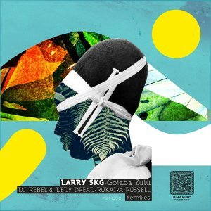 Larry Skg 歌手頭像