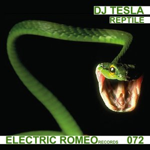 DJ Tesla 歌手頭像