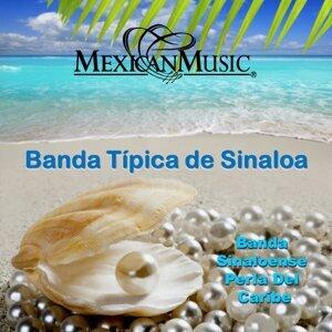 Banda Sinaloense Perla Del Caribe 歌手頭像