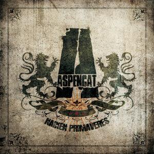 Aspencat 歌手頭像
