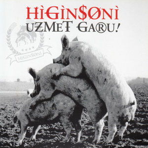 Higinsoni