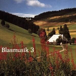 Blasmusik 3 歌手頭像