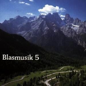 Blasmusik 5 歌手頭像