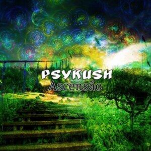 PsyKush 歌手頭像