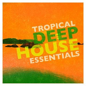 Tropical House 歌手頭像