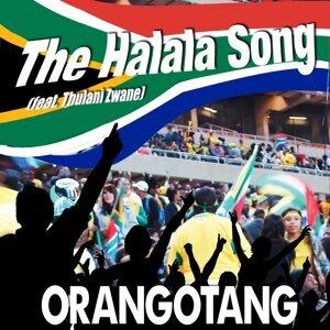 Orangotang 歌手頭像