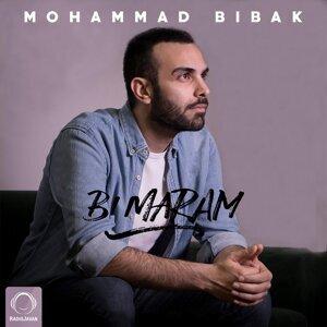 Mohammad Bibak 歌手頭像