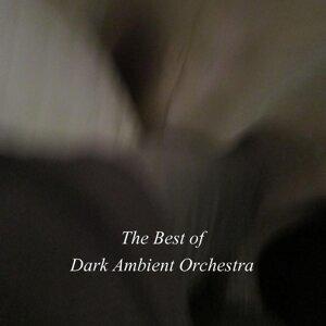 Dark Ambient Orchestra, Daniele Santini 歌手頭像