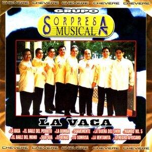 Grupo Sorpresa Musical 歌手頭像