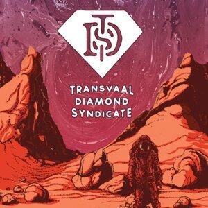 Transvaal Diamond Syndicate 歌手頭像