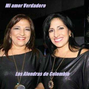 Las Alondras de Colombia 歌手頭像