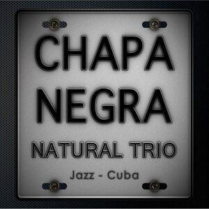 Natural Trio 歌手頭像