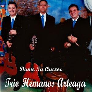 Trío Hermanos Arteaga 歌手頭像