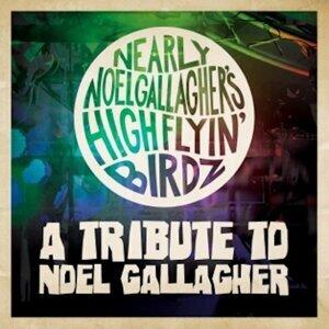 Nearly Noel Gallagher's Highflyin Birdz