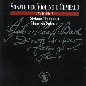 Stefano Montanari, Maurizio Salerno 歌手頭像