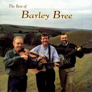 Barley Bree 歌手頭像