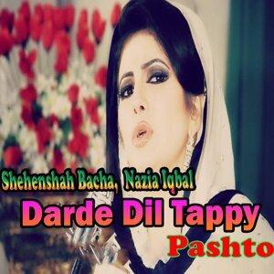 Shehnshah Bacha, Nazia Iqbal 歌手頭像