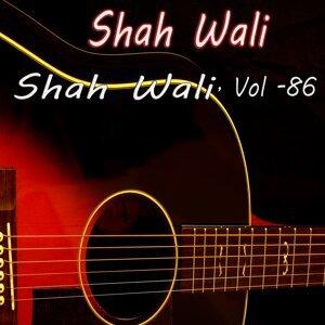 Shah Wali 歌手頭像