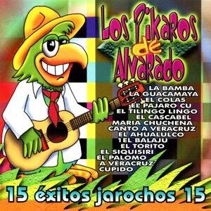 Los Pikaros De Alvarado 歌手頭像