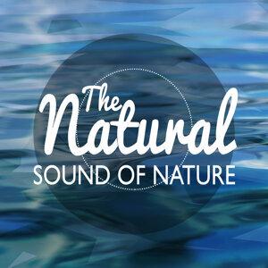 Natural Nature 歌手頭像