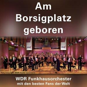 WDR Funkhausorchester 歌手頭像