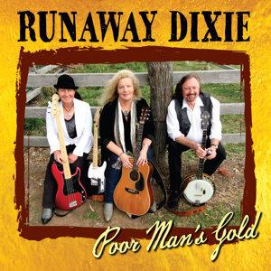 Runaway Dixie 歌手頭像