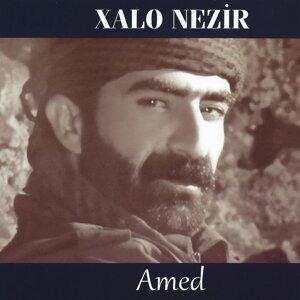 XALO NEZİR 歌手頭像