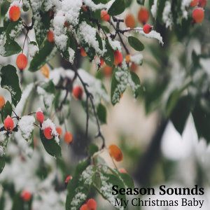 Season Sounds 歌手頭像