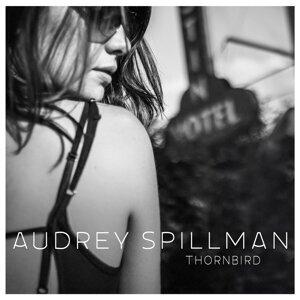 Audrey Spillman 歌手頭像