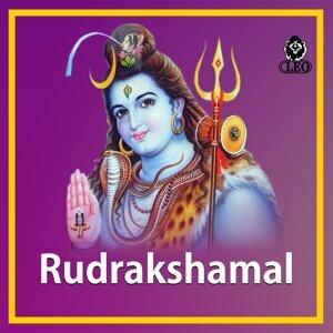 V. Ramakrishna, S. P. Shailaja 歌手頭像