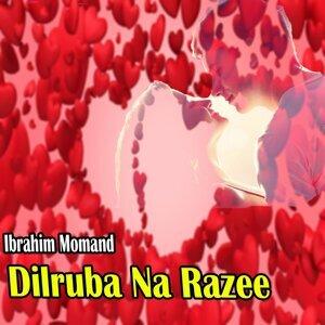 Ibrahim Momand 歌手頭像