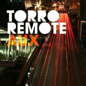 Torro Remote 歌手頭像
