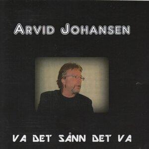 Arvid Johansen 歌手頭像