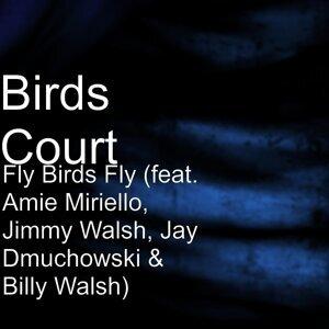 Birds Court 歌手頭像
